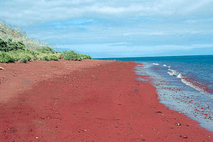 Galapagos Red Sand Beach